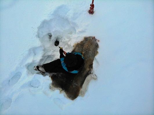 ice fishing vue du dessus.jpg